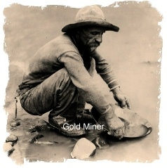 Picture of a Goldminer
